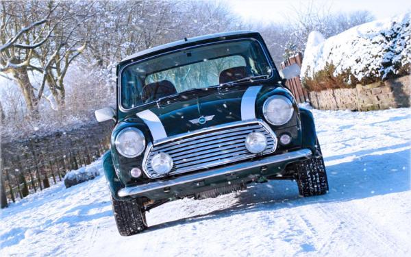 Prep your Mini for Winter!