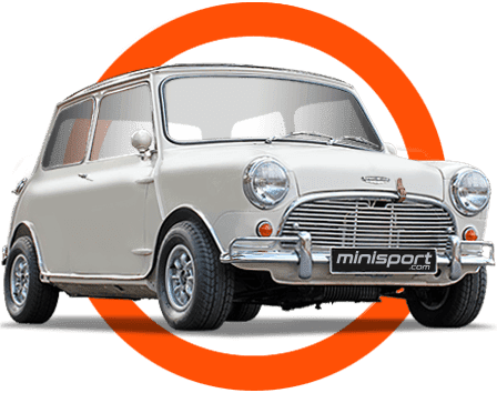 High-Quality Mini Specialists